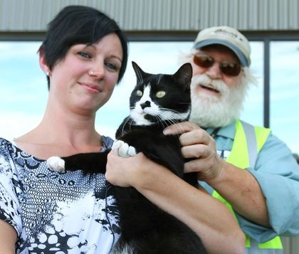 Truckers Help Reunite Lost Cat with Family