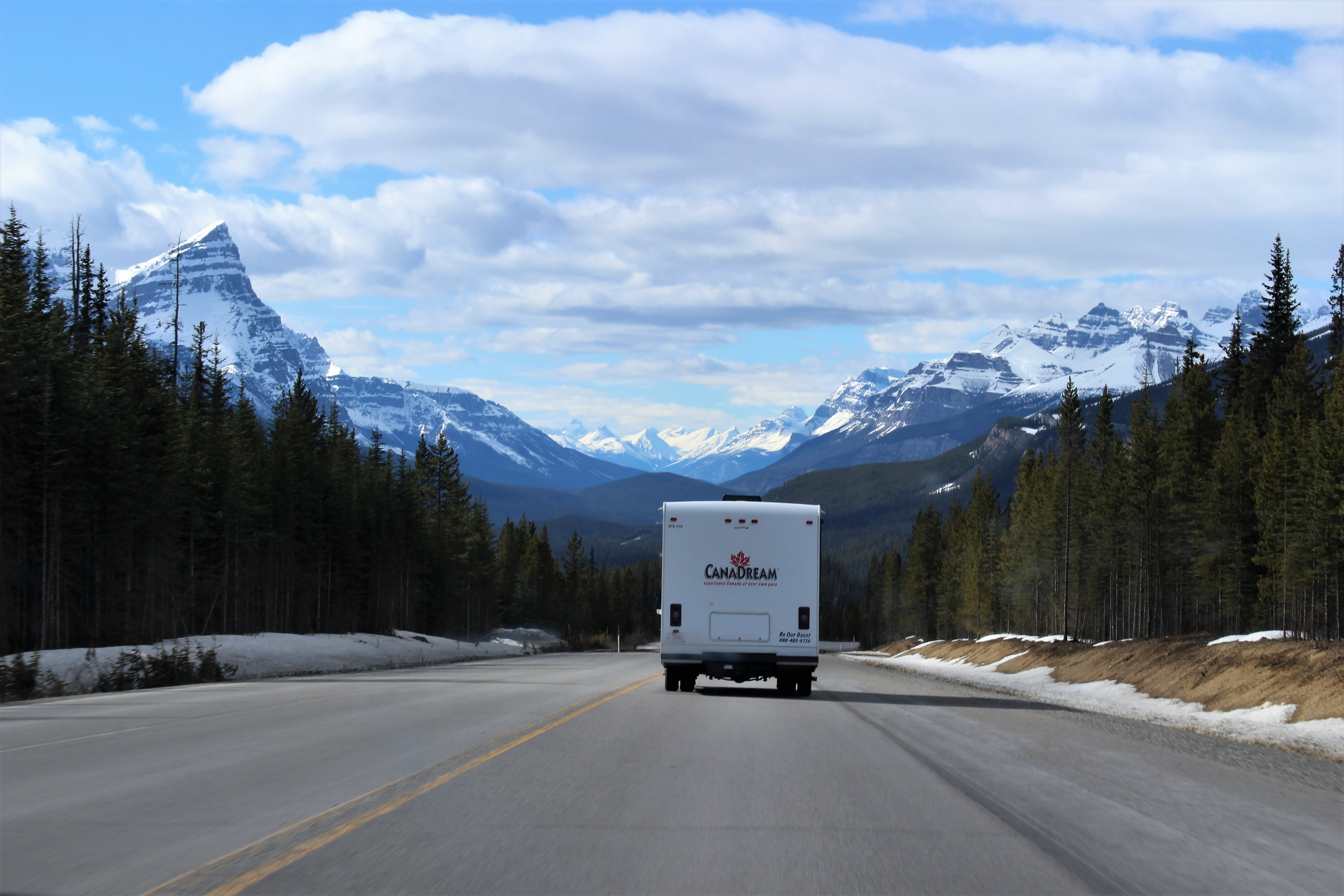 White CanaDream truck on the road.