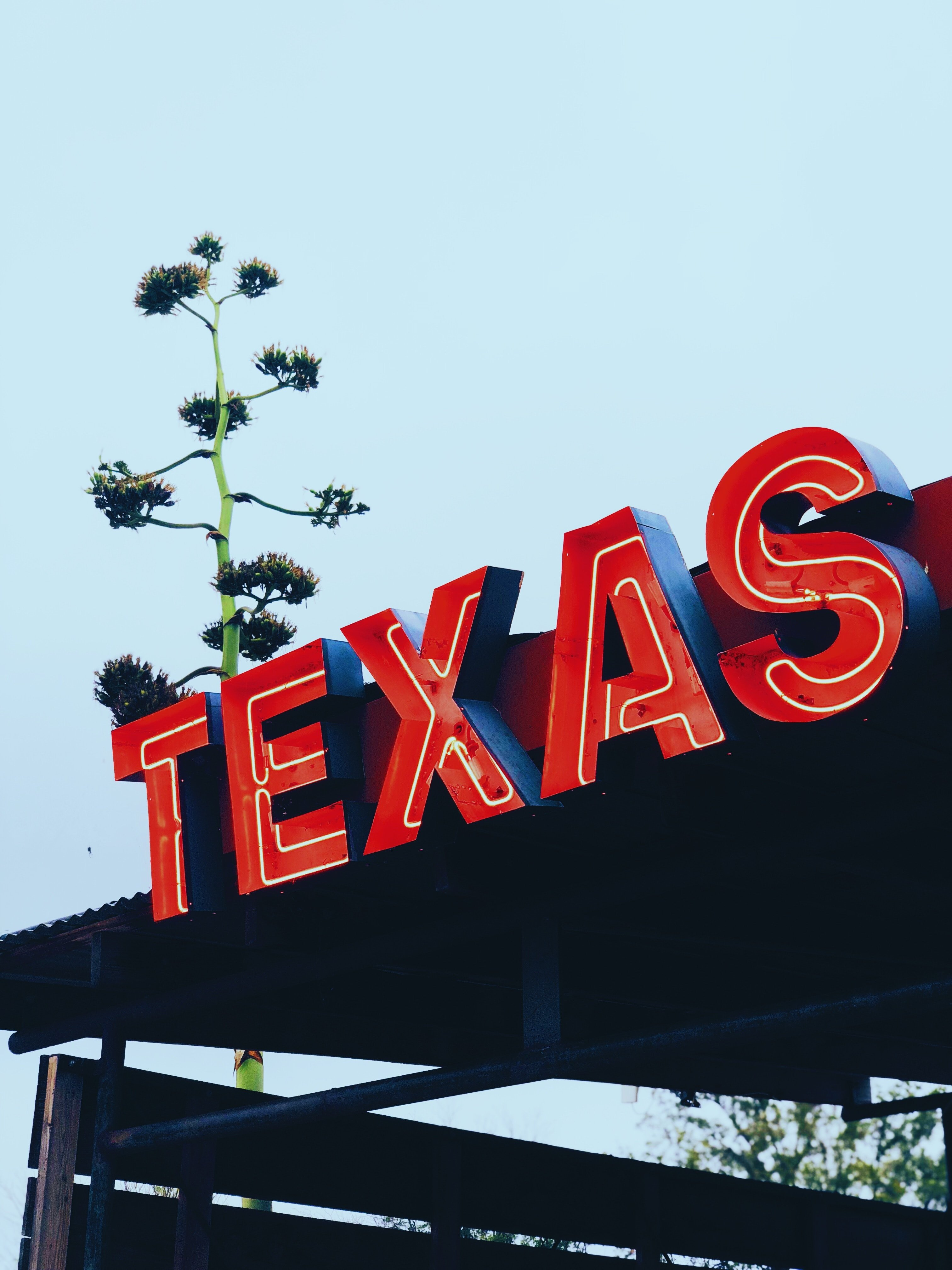 Texas board.